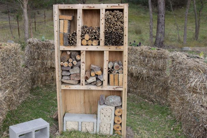 A 'bee hotel', stuffed with sticks, clay-filled besser blocks and bundles of plant material made by students at Lithgow High School. (ABC Central West: Melanie Pearce)
