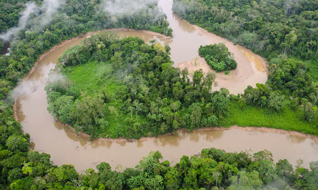 Tiputini river and rainforest in Yasuni national park in Ecuador's Amazon forest. Oil companies are given permit to drill for 920m barrels of crude believed to be beneath the forest floor. Photograph: Pete Oxford/Corbis