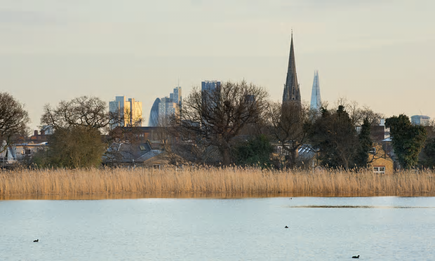 London City landmarks visible in the horizon. Photograph: Penny Dixie/Woodberry Wetlands