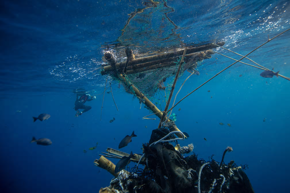 A diver enters the water to inspect FADs. Photograph: Will Rose/Greenpeace