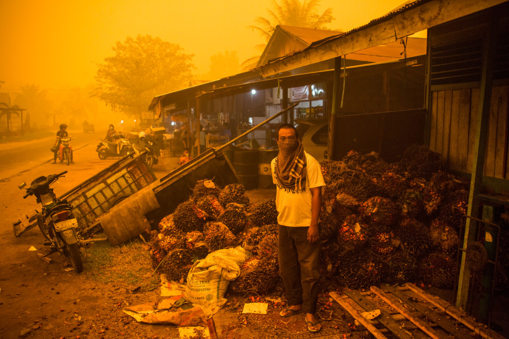 A man stands before a pile of oil palm fresh fruit bunches at the height of last year's fire and haze crisis in the Central Kalimantan city of Palangkaraya, one of the hardest hit by the disaster. The orange color is real. Photo by Bjorn Vaughn