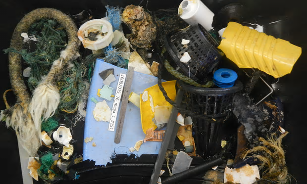 'We opened the door and we saw the debris everywhere. Every half-second you see something.' Photograph: Ocean Cleanup
