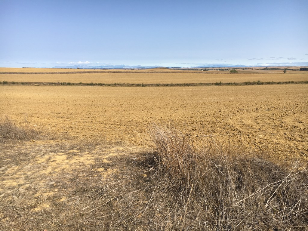 Vast expanses of harvested cropland.