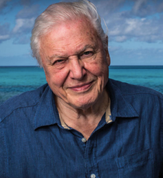 Natural historian Sir David Attenborough, the 91-year-old presenter of Blue Planet II. BBC