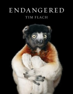 Photographs of endangered species in a beautiful book by Tim Flach