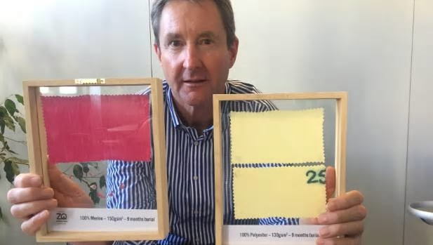 NZ Merino chief executive John Brakenridge with a sample of merino fabric, bottom left, which has completely degraded after nine months' burial, compared to synthetic, right, which has failed to break down at all. Photo: Gerard Hutching/Stuff