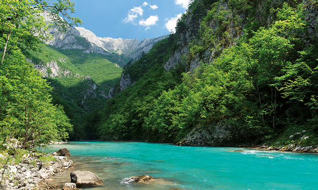 The section of the Tara river in Montenegro that would be affected by dams on the Drina. Photograph: Riverwatch