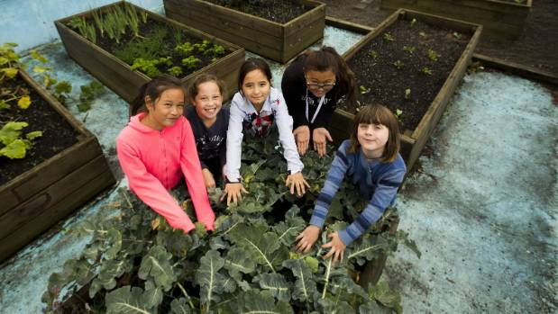 In their vegetable garden are Dezyah Cunningham, Jaelyn-May Baker, Zakia Sayed, Sareal Chapman and Jordan Foot. Photo: David Unwin/Stuff