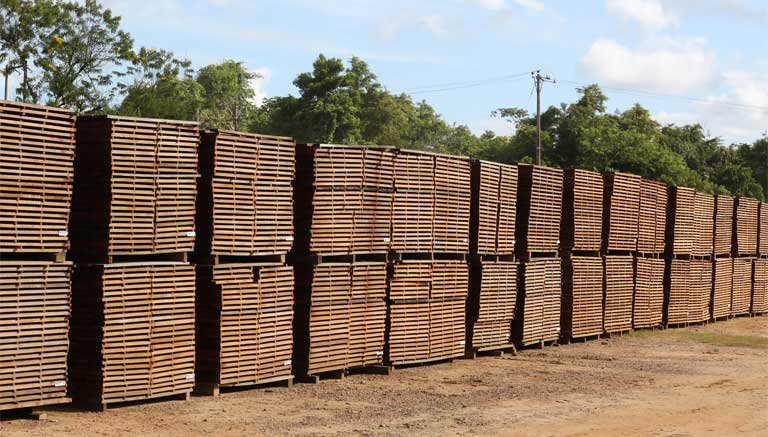Stacks of rainforest timber. Global demand for wood by a rising human population helps drive Amazon deforestation, which in turn helps drive intensifying climate change. Image by Rhett A. Butler/Mongabay