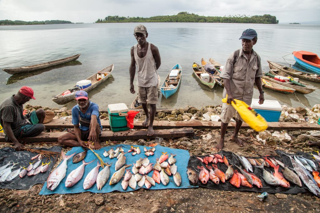 Reef fish for sale in the Solomon Islands. Image: WorldFish