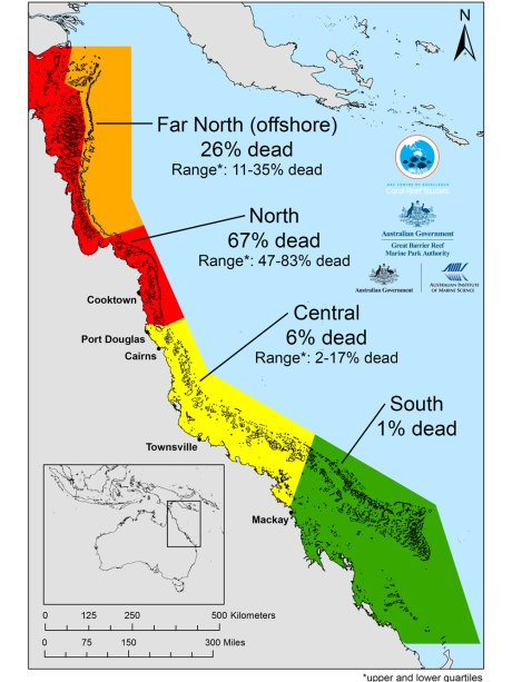 In 2016 coral loss was highest in the northern section of the reef where the heatwave was strongest. (Supplied: ARC Centre of Excellence for Coral Reef Studies)