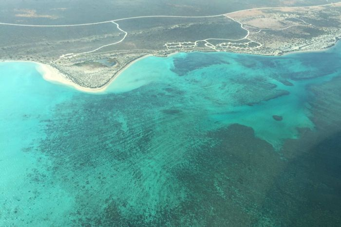 Photo: The World Heritage listed Ningaloo Reef has recorded incredibly low levels of marine debris. (ABC Rural: Michelle Stanley)