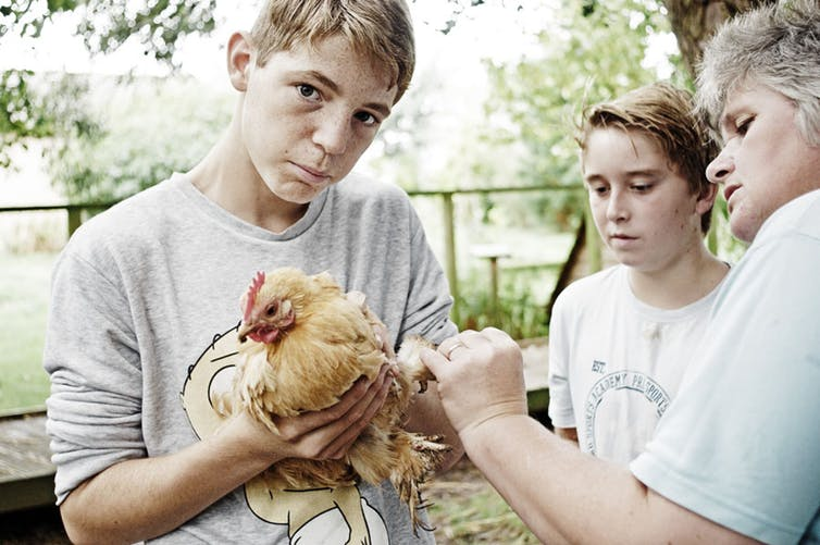 The young people learn to care for a variety of animals. Sarah Hambidge, Author provided