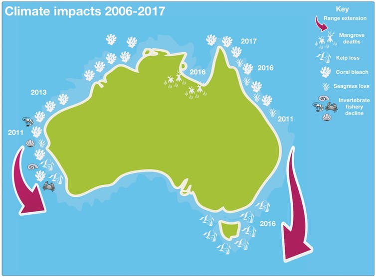 Summary of recent climate-related marine impacts in Australia. Warming on both coasts is also moving species southwards. Author provided