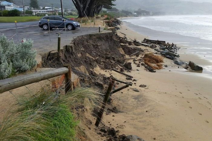 Photo: Large stretches of beach at Apollo Bay and Marengo were washed away in winter storms. (Supplied: Pete Fillmore)