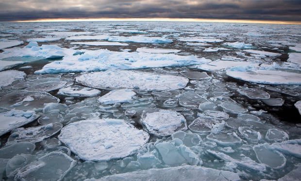 Scientists say thinning of the sea ice has reached even the coldest parts of the Arctic. Photograph: Nick Cobbing/Greenpeace