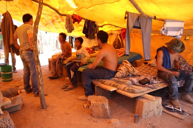 35 indigenous people were found in conditions described as 'slavery'. Photograph: Handout from Paraguay Public Ministry