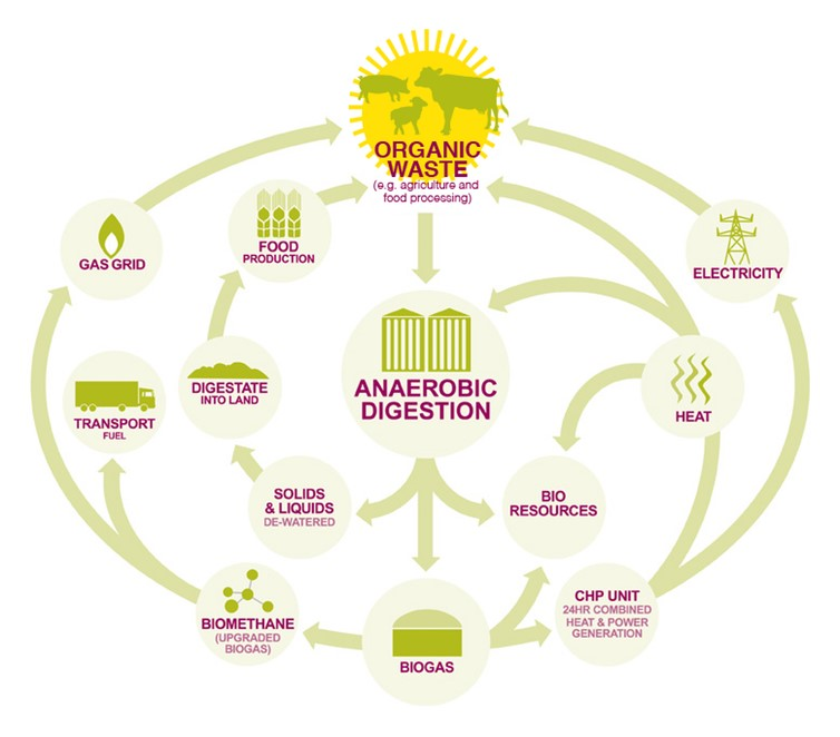 Multiple products of anaerobic digestion. Modified from ADBA with permission