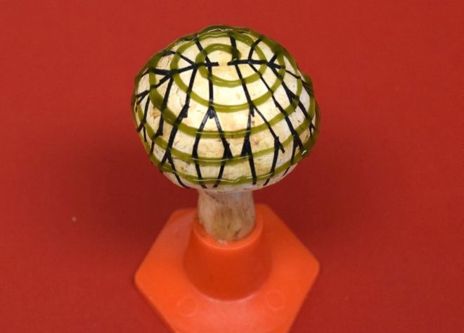 A button mushroom coated in bugs and nanowires can produce electricity from light. Photo: American Chemical Society.